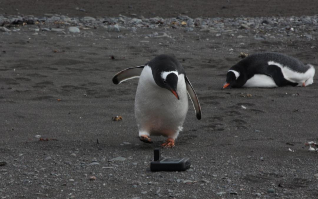 ESTEM Antarctica goes Iridium GO!