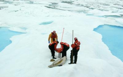 Iridium's Unique Role in the Polar Regions